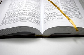 ... inductive Bible studies for groups of college students and young adults.