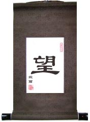 Hope Single Chinese Character Art Scroll