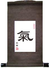 Life Energy Qi Single Character Chinese Calligraphy Scroll